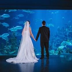 Venues - Misfit Wedding