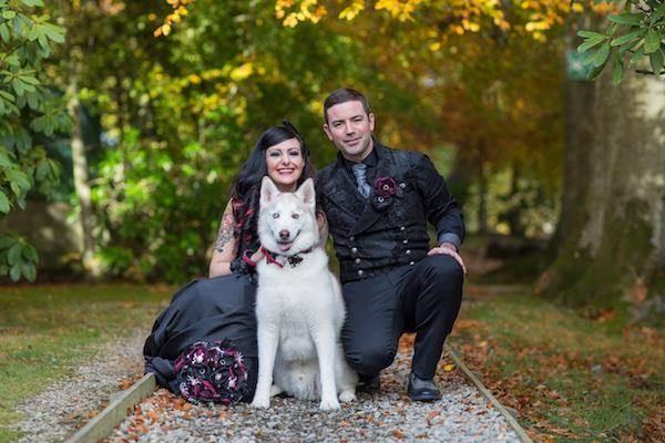 Halloween wedding couple with their Husky